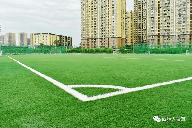 人造草坪主题公园